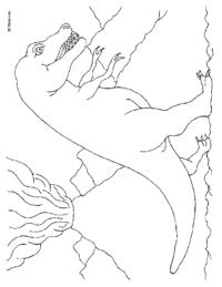 Tyrannosaurus-Rex Coloring Page