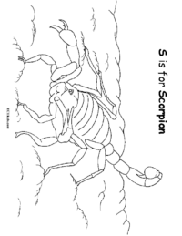 S is for Scorpion Coloring Page
