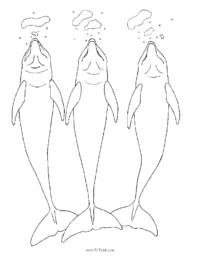 Fun with 3 Dolphins Coloring Page