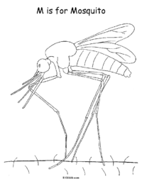 M is for Mosquito Coloring Picture