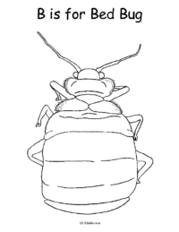 B is for Bed Bug Coloring Page