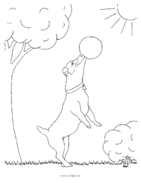 Dog Playing Ball Coloring Page