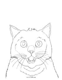 Cat Face Coloring Picture