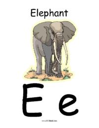 Letter E Classroom Poster