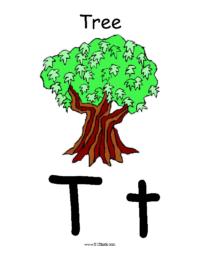 Letter T Poster